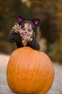 Girl (4-5) in cat costume standing behind pumpkin, portrait
