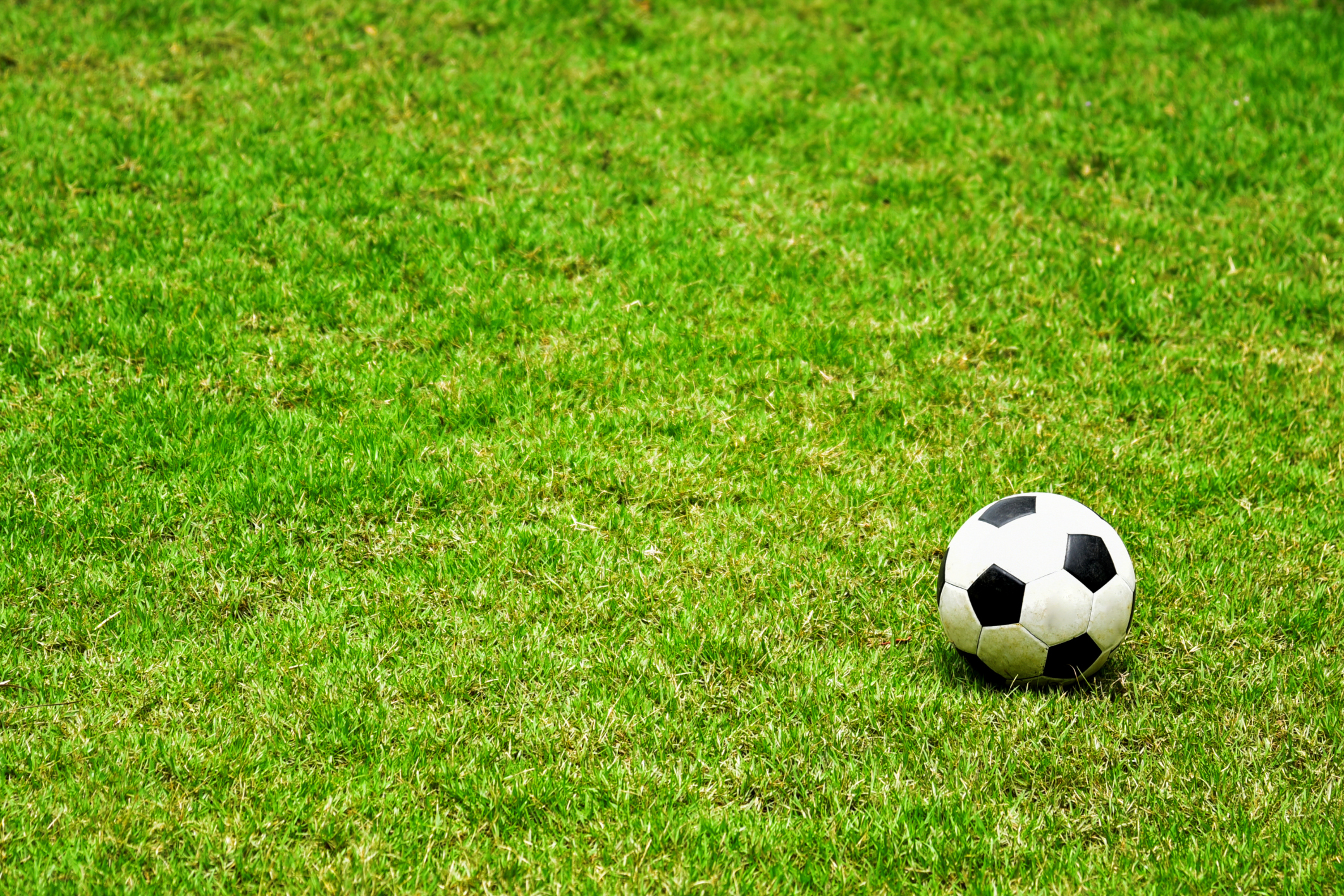 High Angle View Of Soccer Ball On Grassy Field