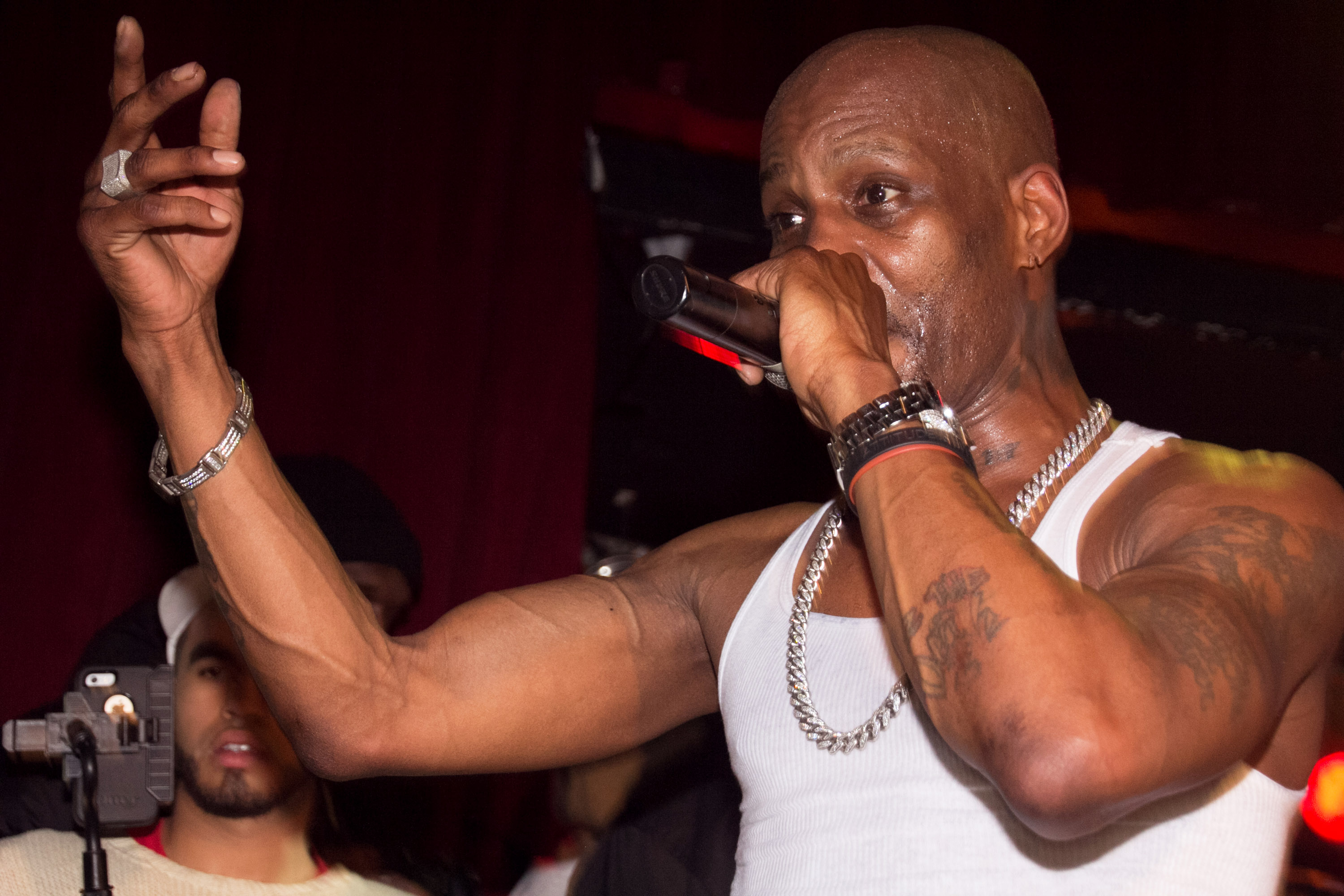 DMX In Concert - New York, NY