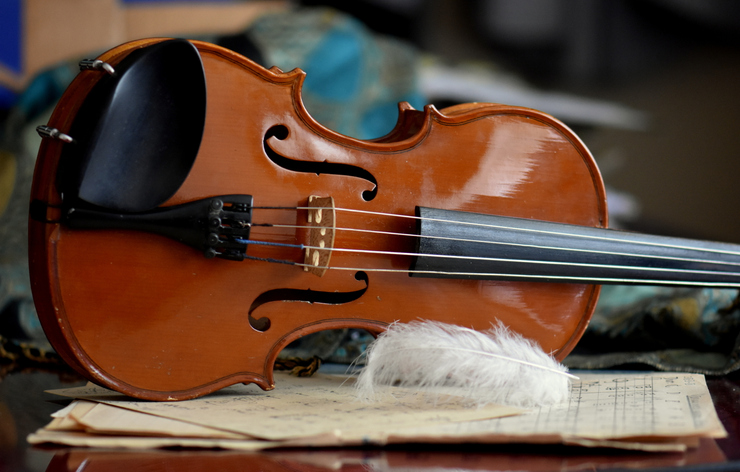 Close-Up Of Violin And Feather On Table